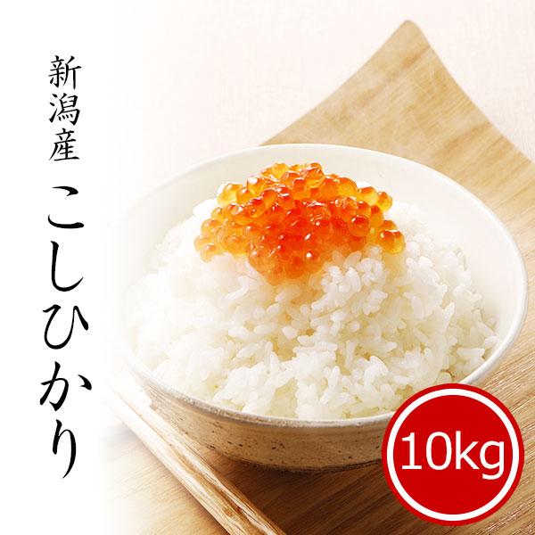 新潟産コシヒカリ 10kg 白米 令和2年産