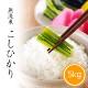 新米 無洗米コシヒカリ5kg 白米 令和3年産