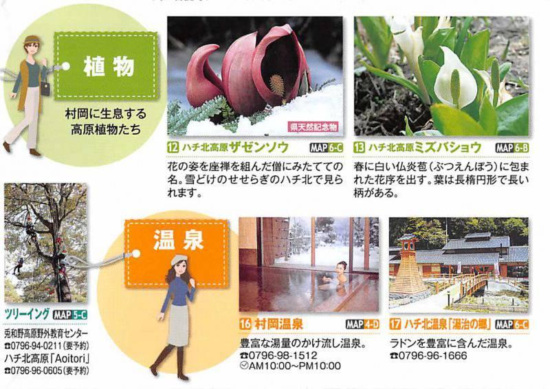 兵庫県 香美町村セット/多数のジオスポットに感動