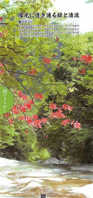 愛媛県宇和島市セット/情緒きらめく四国の終着駅