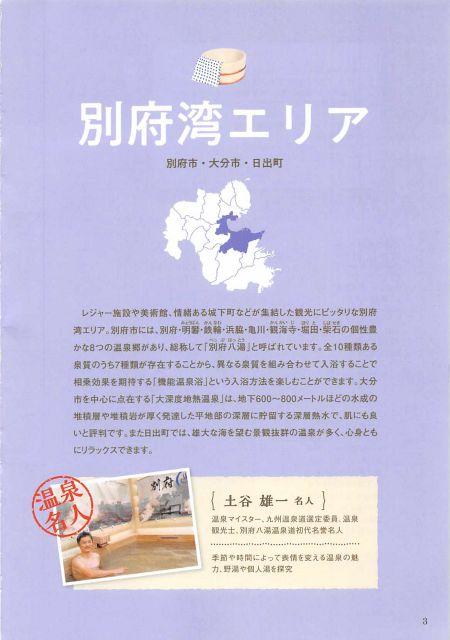 大分県 おんせんガイドブック/温泉名人のおすすめ温泉!