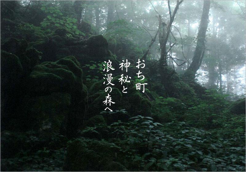高知県 越知町/神秘と浪漫の森へ