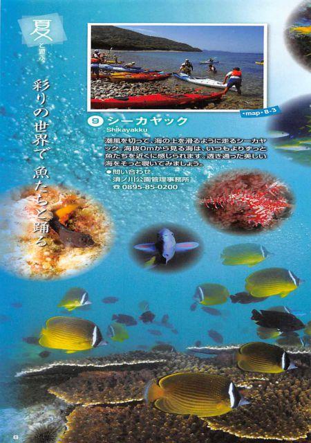 愛媛県 愛南町/釣りを楽しみ、愛南びやびやかつおを食べよう!