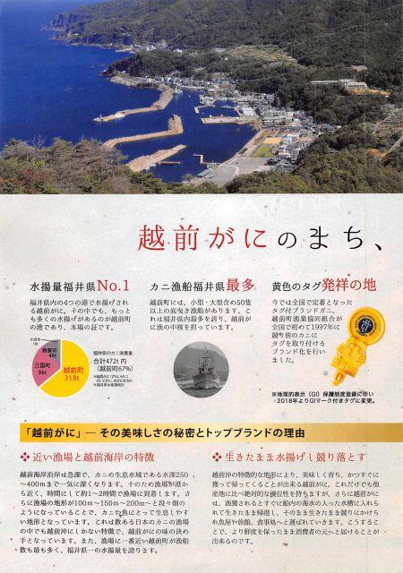福井県 越前町セット/越前がにの本場