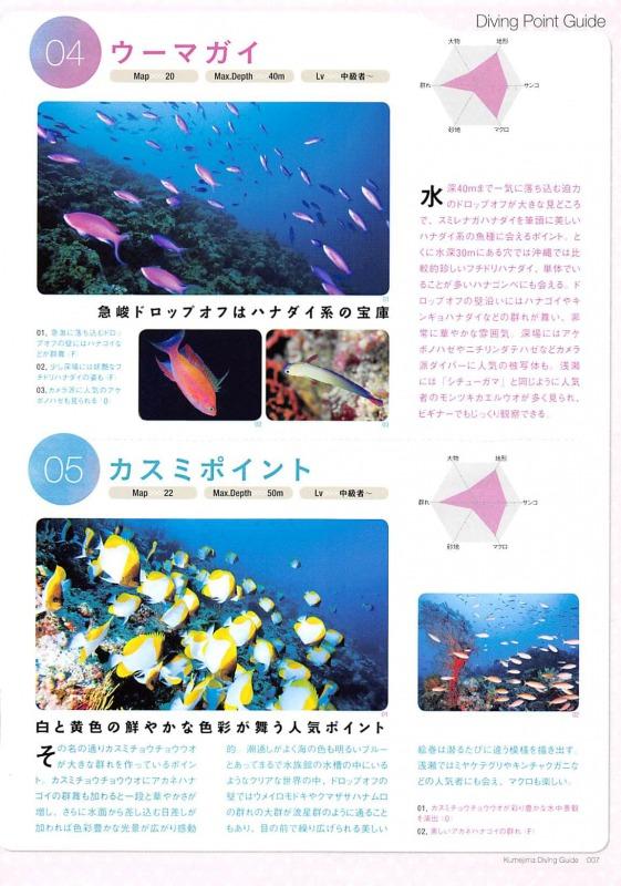 久米島ダイビングBook/高い透明度の久米島ブルーの海でジンベイザメに会いたい!を叶える