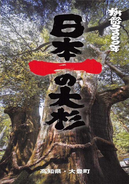 高知県 大豊町セット/樹齢3000年 日本一の大杉