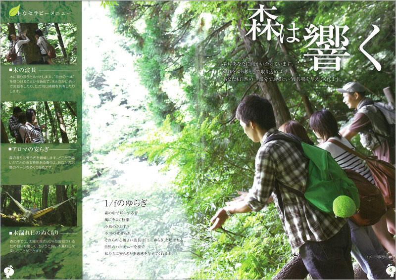 鳥取県 智頭町セット/鳥取砂丘を育む源流の森で癒される