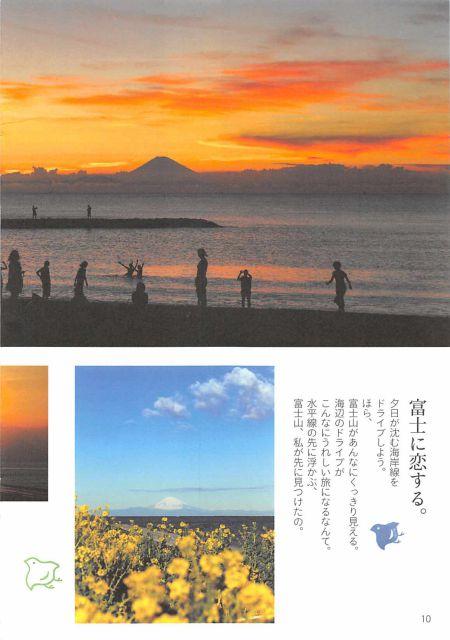 千葉県 館山市セット/ゆったりとたてやま