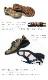 【SPEEDY DUCK(スピーディーダック)】スエード&テープカラーコンビがタウンユースに最適なレディーススニーカー[FOO-MY-7270]H4.0