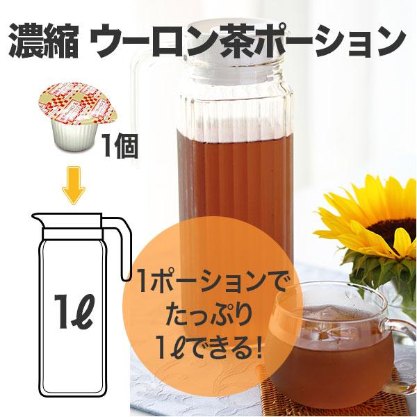 濃縮ウーロン茶ポーション 15個入り