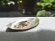 純銀製 豆皿 -若葉-