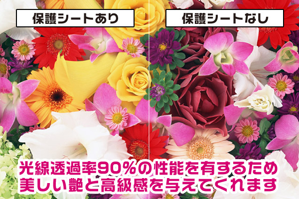 OverLay Brilliant for ウォークマン NW-ZX300G / NW-ZX300