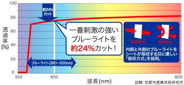 OverLay Eye Protector for ウォークマン NW-ZX300G / NW-ZX300