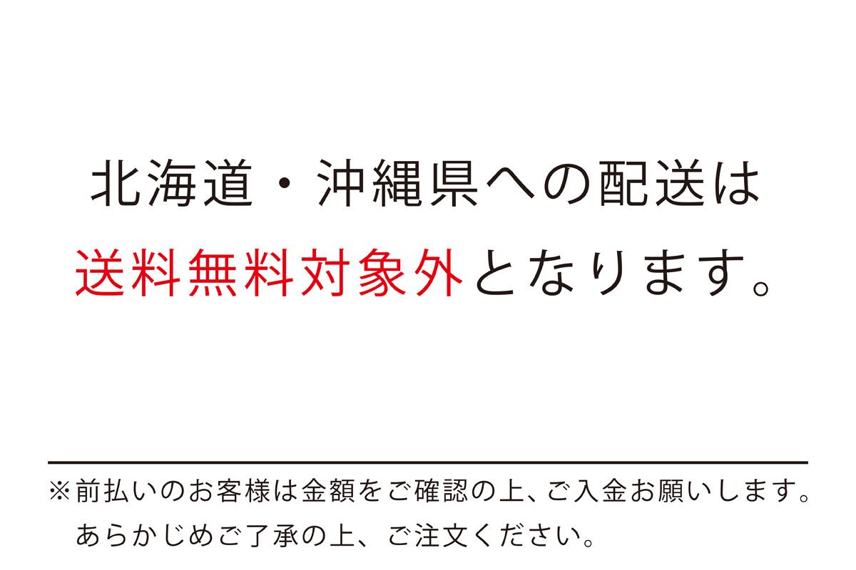 ★▲■プーマ PUMA ディスクリバース(プーマブラック)【194812-04】