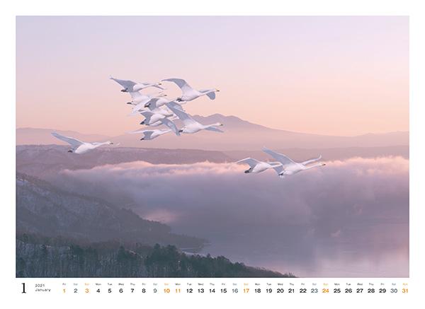 カメラマン 2021カレンダーシリーズ 09 片岡司 「Wind of mind」
