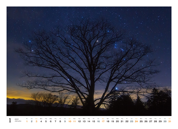 カメラマン 2021カレンダーシリーズ 17 田中達也 「月夜の晩に…」