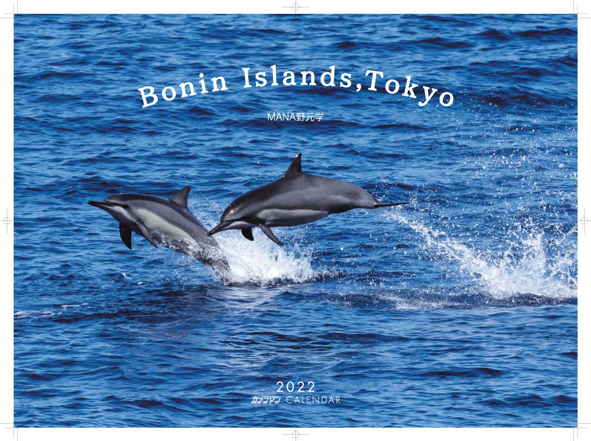 カメラマン 2022カレンダーシリーズ 10 MANA野元 学「Bonin Islands,Tokyo」
