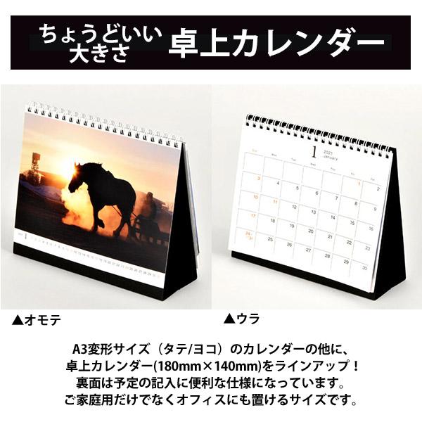 カメラマン 2021カレンダーシリーズ 18 中条望 「LIFE」