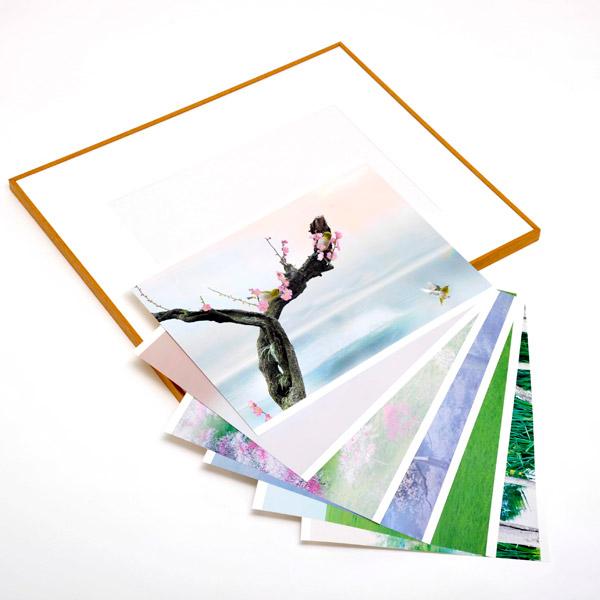 WEBカメラマン オリジナル作品額装セット 03 片岡司 「wind of colors 心和む写心」