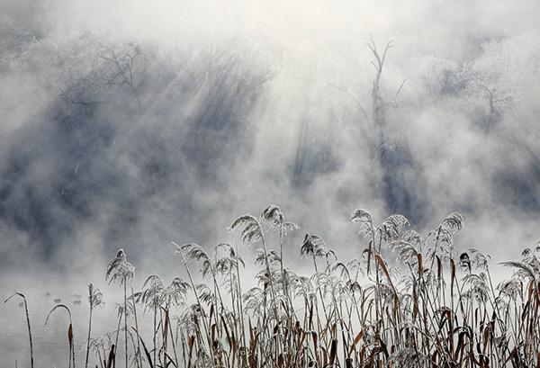 WEBカメラマン オリジナル作品額装セット 08 山本純一 「カムイの大地」