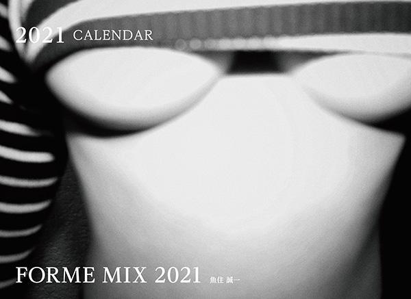 カメラマン 2021カレンダーシリーズ 06 魚住誠一 「FORME MIX 2021」