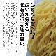 北海道産シシリアンルージュのトマトラーメン (2食入)