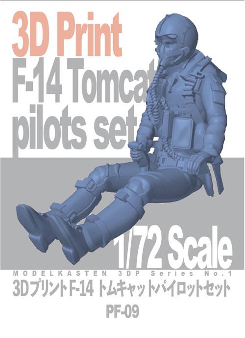 3Dプリント F-14トムキャットパイロットセット