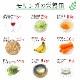 沖縄・石垣産 モリンガの生葉(2kg)