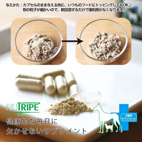 犬 猫用 NUTRIPE ニュートライプ GLM サプリ 120粒 緑イ貝100% 関節 軟骨 皮膚 被毛 サプリメント