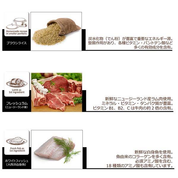 成犬用 総合栄養食 犬 ドッグフード オーブンベークド トラディション セミモイスト アダルトフィッシュ 2.27kg