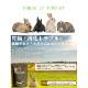 国産 牧草市場 チモシーのチカラ グルテンフリー 1kg  うさぎ フード オールステージ 毛玉ケア 尿臭 消化吸収
