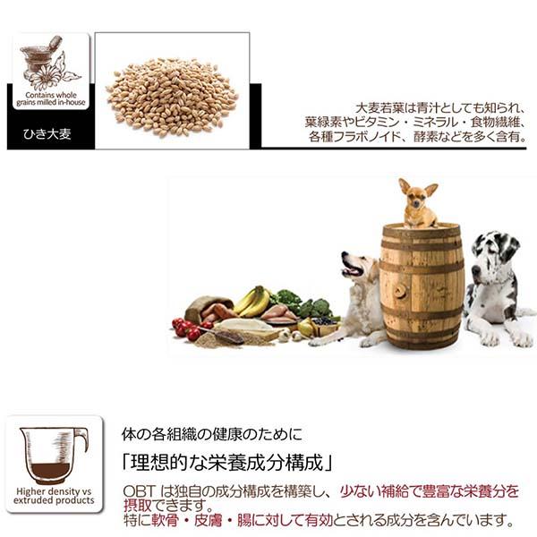 まとめ買い半額 100g×10 成犬用 オーブンベークド トラディション セミモイスト アダルトフィッシュ 100g