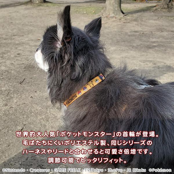 ポケモン カラー S イエロー 犬 猫用 首輪 クビワ 犬 くびわ お出かけ