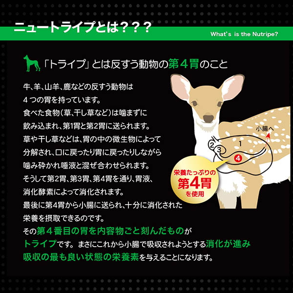 20%割引【まとめ買い24缶×95g】【NEW】成犬用 ドッグフード NUTRIPE PURE ニュートライプ ピュア チキン&グリーントライプ 95g