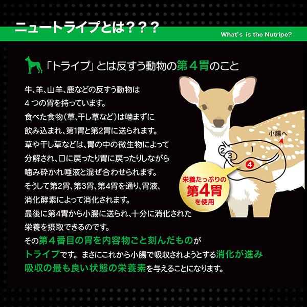 20%割引【まとめ買い24缶×95g】子犬用 ドッグフード NUTRIPE_JUNIOR ニュートライプ ジュニア ラム&グリーントライプ 95g