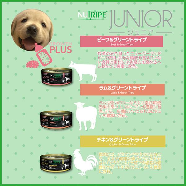 20%割引【まとめ買い24缶×95g】子犬用 ドッグフード NUTRIPE_JUNIOR ニュートライプ ジュニア チキン&グリーントライプ 95g