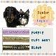 イタリアferplast社製 ダービー DERBY リード G10/110 犬 りーど リード さんぽグッズ 散歩用品 お出かけ お散歩グッズ 送料無料
