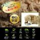 子犬用 ドッグフード NUTRIPE_JUNIOR ニュートライプ ジュニア ビーフ&グリーントライプ 95g