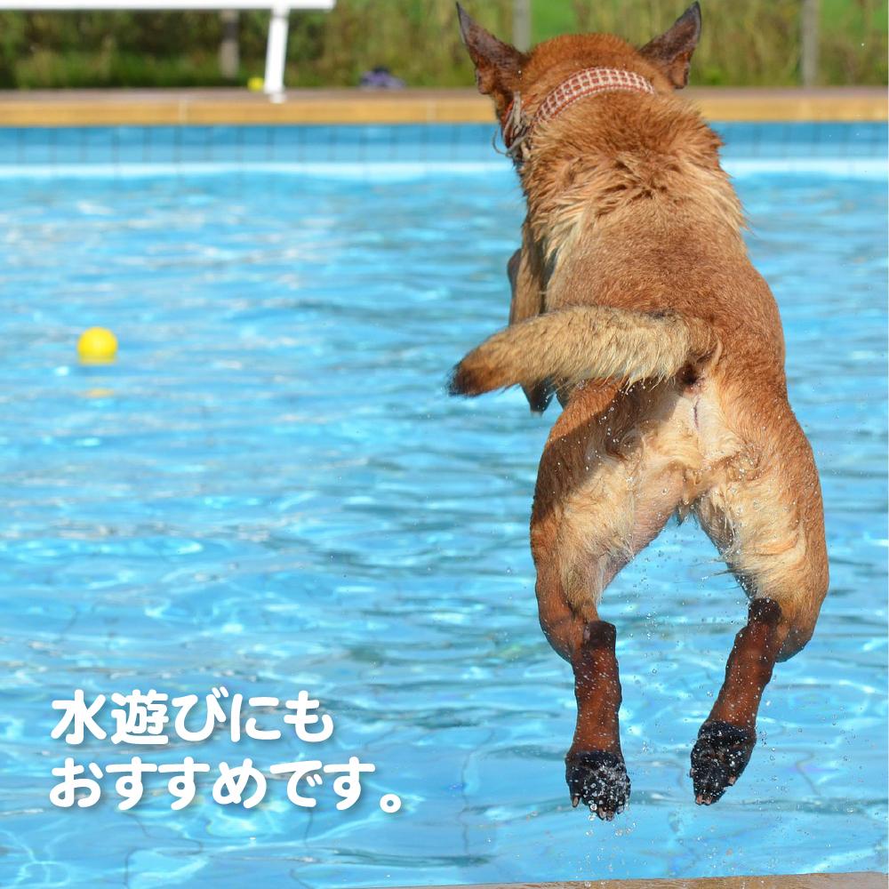 ファンボール ペット用玩具 犬 猫 おもちゃ ボール