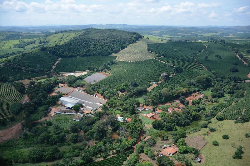 ブラジル カッシャンブー農園 テイストオブハーベスト