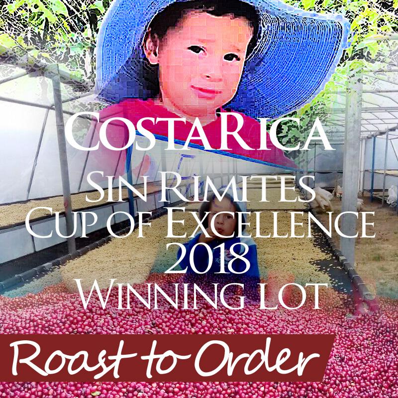 【注文後焙煎だから鮮度抜群】 コスタリカ シン・リミテス農園 250g ※コスタリカ カップオブエクセレンス2018入賞