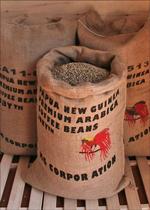 【注文後焙煎だから鮮度抜群】 パプアニューギニア フィニステラAA 250g
