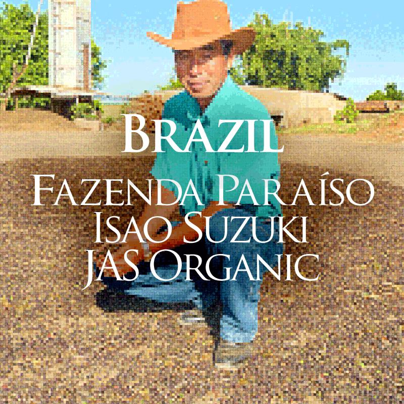 ブラジル パライーゾ農園 鈴木功さんの有機コーヒー