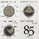 【注文後焙煎だから鮮度抜群】 エチオピア イルガチェフェ オーガニック 250g