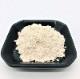 肥後菊芋粉末タイプ80g入 お得な2袋セット