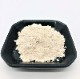 肥後菊芋粉末タイプ80g入 とってもお得な5袋セット