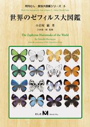 世界のゼフィルス大図鑑