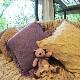贅沢なカシミヤ100%のざっくり縄編み柄クッションカバー【45x45cm】