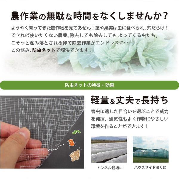 日本製 国産 防虫ネット サンサンネット 白生地 からみ織 N3800 【2×4mm】 約幅1.5×長さ100m 園芸 畑 農業 防虫シート