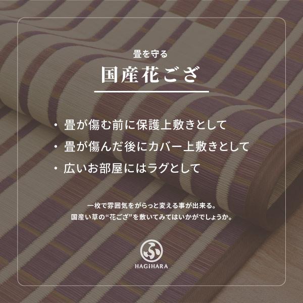い草 上敷き 6畳 【絨毯柄4柄】 約261×352cm 【江戸間6畳】【裏貼有】 (イデア・いざよい・オーナメント)
